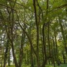 steinhoefel_park-15