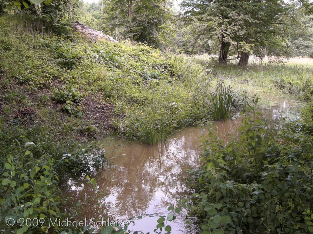 Blick vom noch mit Wasser gefüllten Burggraben zur Ostspitze